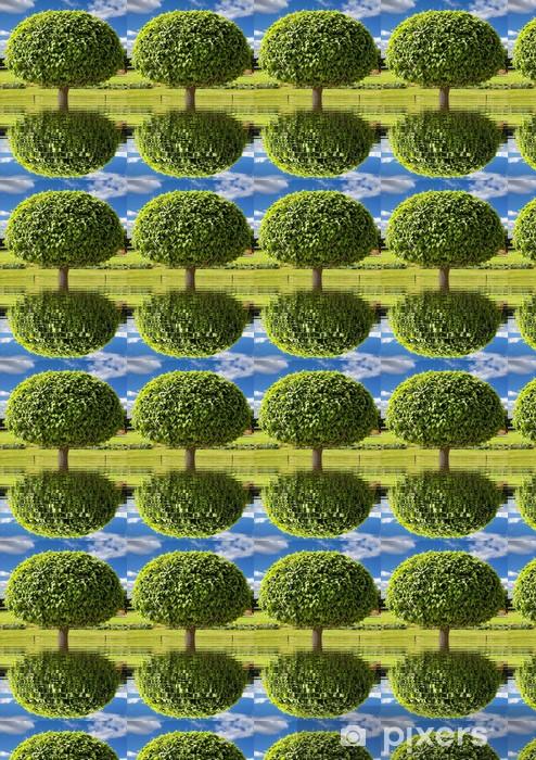 Tapeta na wymiar winylowa Park drzewo - Drzewa