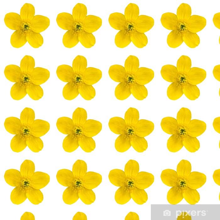 Papier peint vinyle sur mesure Marsh Marigold fleur jaune isolé sur fond blanc - Fleurs