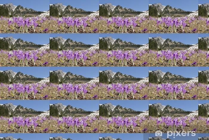 Tapeta na wymiar winylowa Crocus kwiaty na łące górskiej - Tematy
