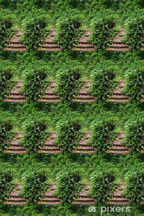 Tapeta na wymiar winylowa Droga przez las - Cuda natury