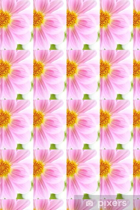 Tapeta na wymiar winylowa Piękny różowy Dalia Dahlia - Pory roku