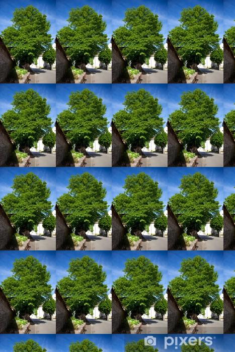 Tapeta na wymiar winylowa Chambolle-Musigny - Drzewa