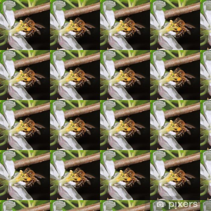 Tapeta na wymiar winylowa Żółty kwiat osa na aple drzewa - Inne Inne