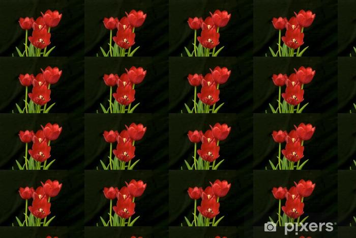 Tapeta na wymiar winylowa Czerwone tulipany - Kwiaty