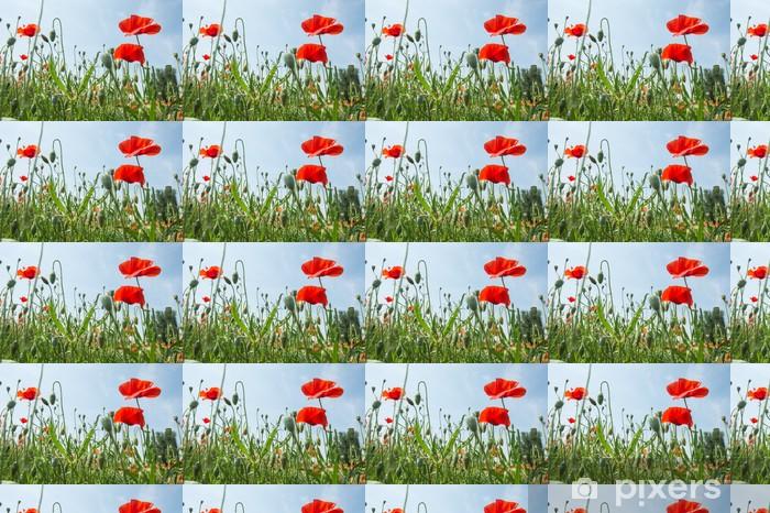 Papier peint vinyle sur mesure Fleurs - Coquelicots - Fleurs