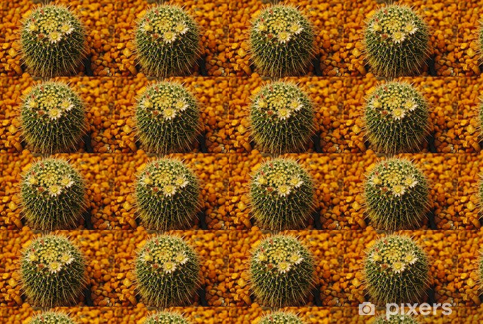 Tapeta na wymiar winylowa Kaktus kwiat - Zdrowie i medycyna