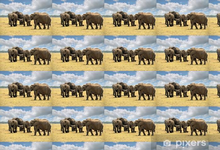 Papier peint vinyle sur mesure Les elephants - Thèmes