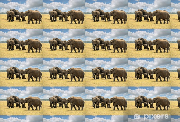 elephants Vinyl custom-made wallpaper - Themes