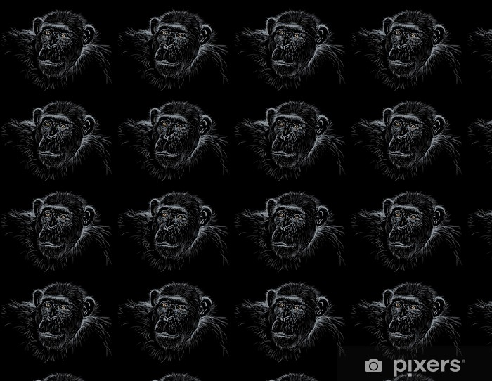 Papier peint vinyle sur mesure Chimpanzé - Afrique