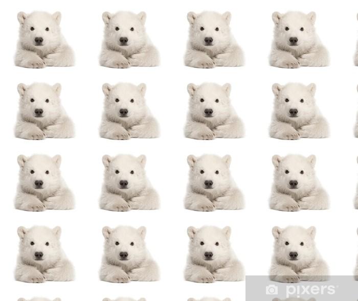 Tapeta na wymiar winylowa Polar bear cub, Ursus maritimus, 3 miesiące, leżącego - Przeznaczenia