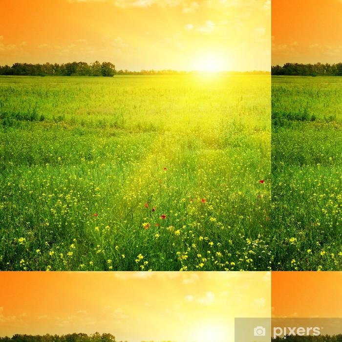Vinylová Tapeta Krásný západ slunce - Témata