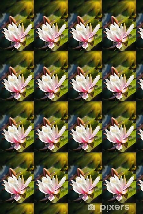 Vinyltapete nach Maß Seerose auf dem Wasser - Blumen