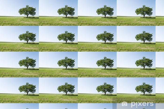 Tapeta na wymiar winylowa Drzewo na łące - Drzewa