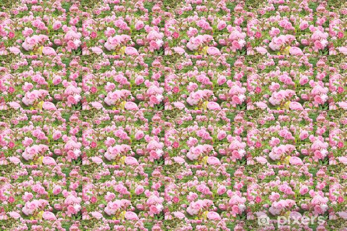 Vinyltapete nach Maß Englisch Rosenbusch - Haus und Garten