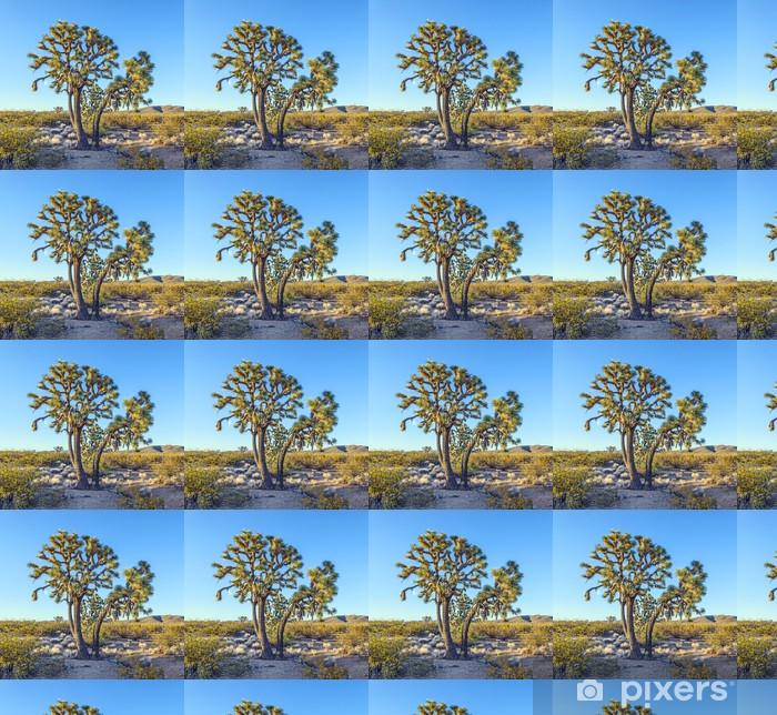 Tapeta na wymiar winylowa Joshua Tree w ciepłym jasnym świetle - Ameryka