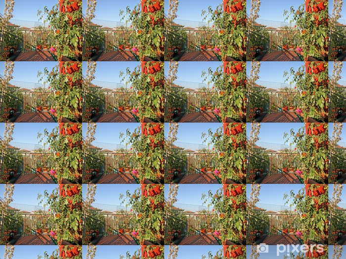 red tomatoes grown in a pot on a terrace of an apartment buildin Vinyl custom-made wallpaper - Home and Garden