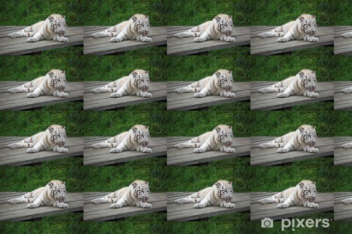 Papier peint vinyle sur mesure Tigre blanc lui-même à laver - Mammifères