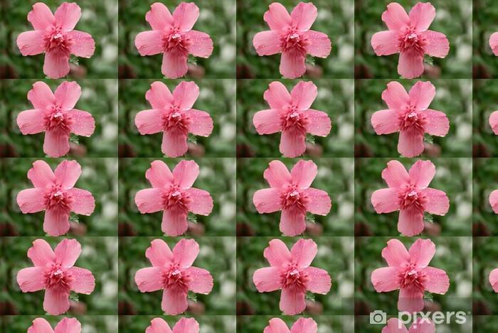 Tapeta na wymiar winylowa Różowy Lavatera - Kwiaty