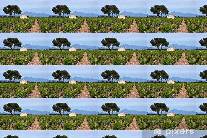 Vinyltapete nach Maß Provence Vineyards - Europa