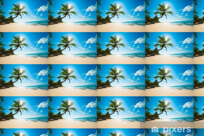 Tapeta na wymiar winylowa Tropikalna plaża w słońcu - Malediwy