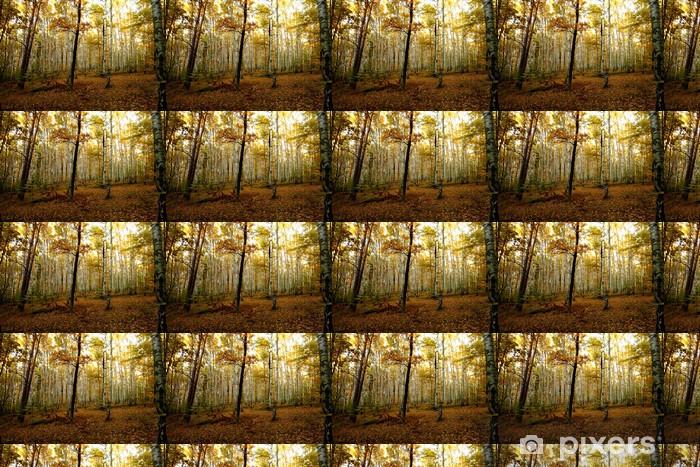 Papier peint vinyle sur mesure Autumn forest - Thèmes