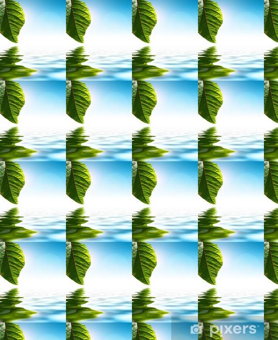Tapeta na wymiar winylowa Świeżych zielonych liści na tle wody - Pory roku