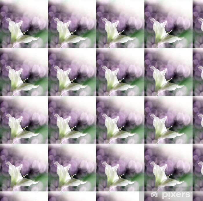 Vinylová tapeta na míru Amarylis květiny a slunce bokeh - Květiny