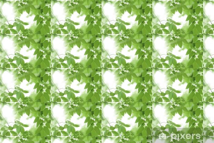 Papier peint vinyle sur mesure Image Fresh vert - Plantes