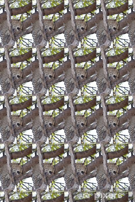 Papier peint vinyle sur mesure Leopard sur un arbre - Afrique