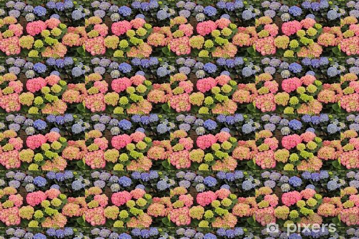 Tapeta na wymiar winylowa Wielokolorowe hortensia (hortensja) kwiaty - Kwiaty