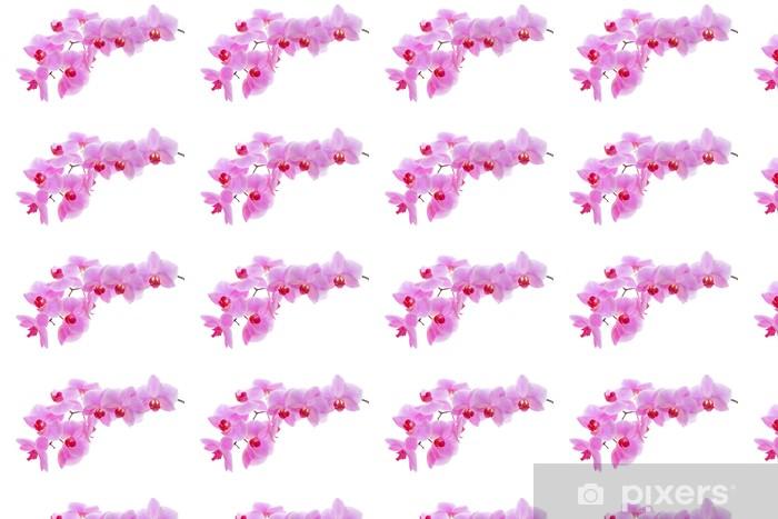 Papier peint vinyle sur mesure Floraison des orchidées - Styles
