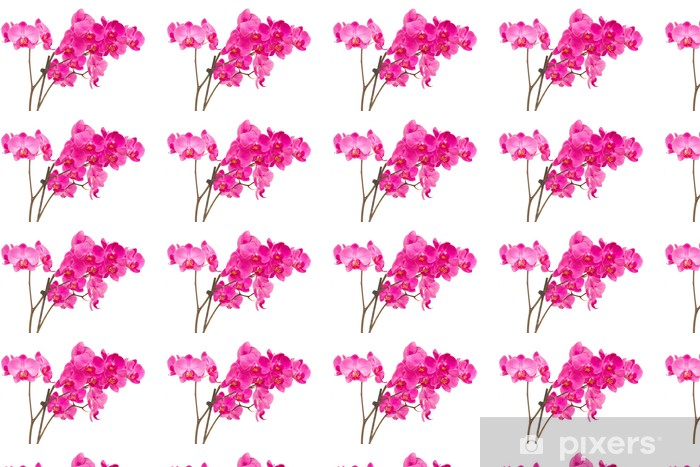 Vinylová tapeta na míru Orchideas - Nálepka na stěny
