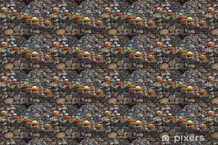 Lanzarote Guatiza cactus garden pots in a row Vinyl custom-made wallpaper - Home and Garden