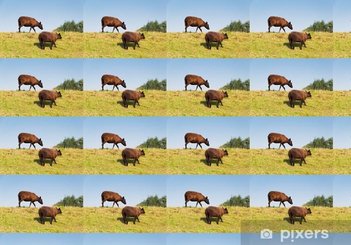 Papel pintado estándar a medida Dos ovejas de color marrón con una capa gruesa y caliente - Mamíferos