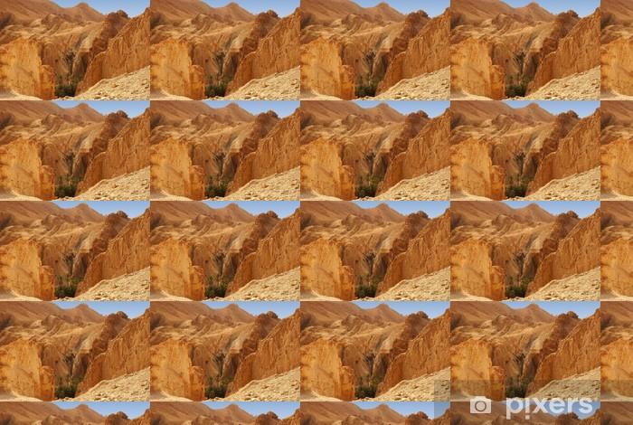 Papier Peint à Motifs Vue Panoramique De Loasis De Chebika Dans Le