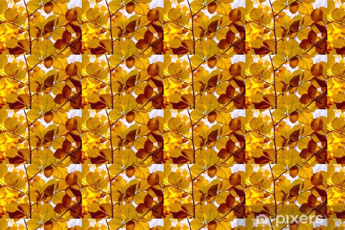 Tapeta na wymiar winylowa Piękne liście w indian świetle lato w jesieni - Pory roku