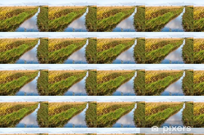 Papier peint vinyle sur mesure Paysage rural néerlandais à l'automne - Saisons
