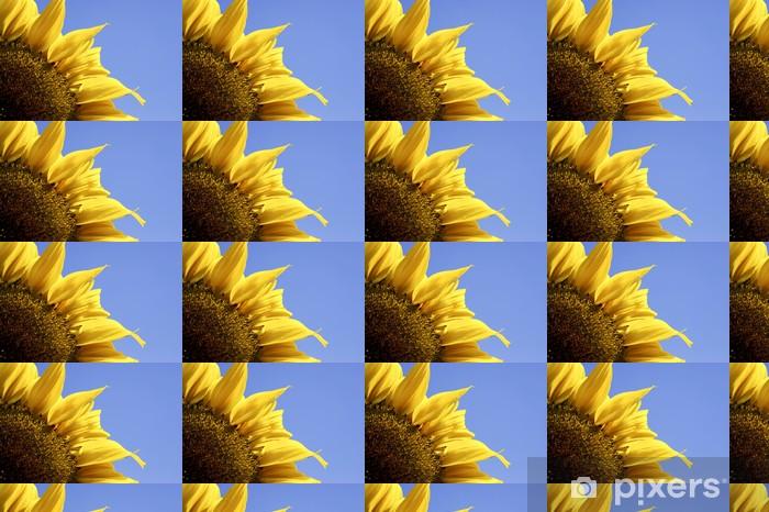 Papier peint vinyle sur mesure Seul jaune tournesol contre le ciel bleu - Fleurs
