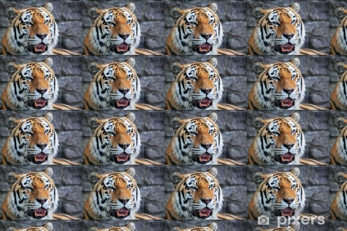 Tapeta na wymiar winylowa Tygrys - Tematy