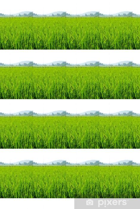 Vinylová tapeta na míru Rýžové pole v Thajsku - Roční období