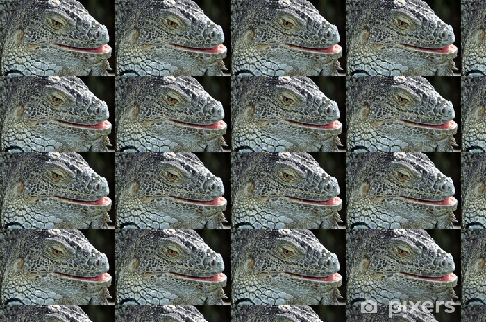 Vinyltapete nach Maß Closeup Portrait von einem Leguan - Themen