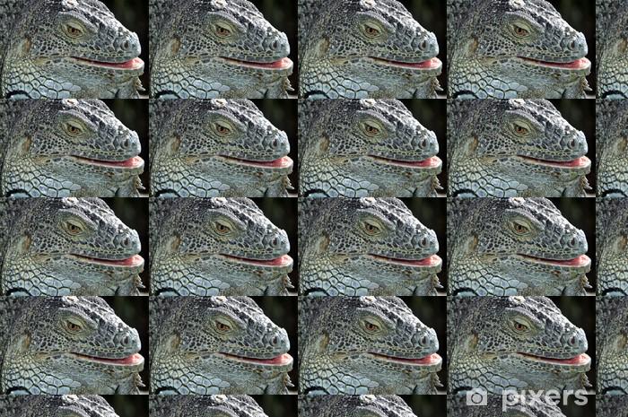 Tapeta na wymiar winylowa Portret Closeup iguana - Tematy