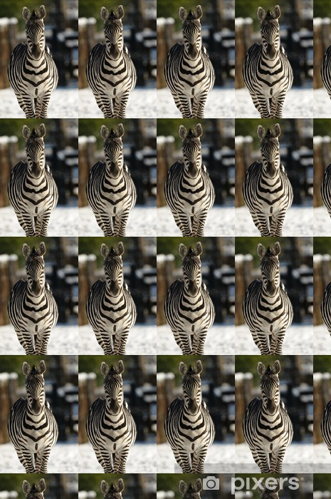 Tapeta na wymiar winylowa Zebra - Tematy