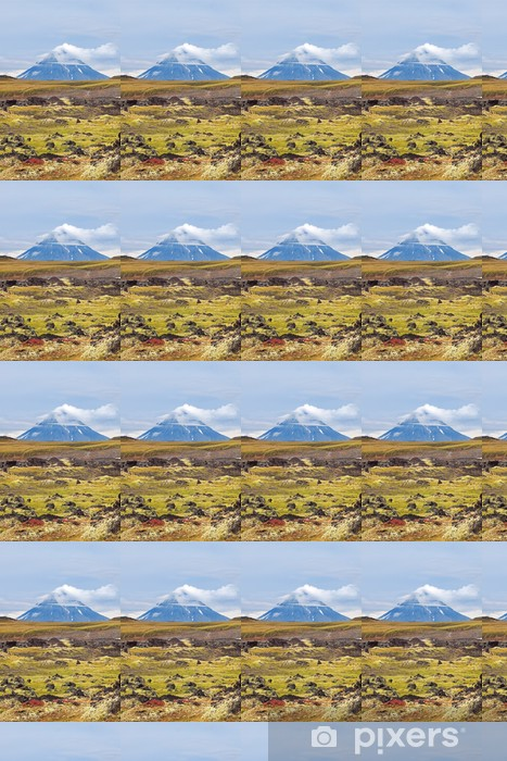 Kamchatka landscape Vinyl custom-made wallpaper - Mountains