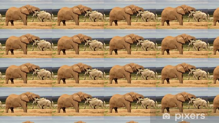 Vinylová tapeta na míru Elephant Bull Pití - Témata