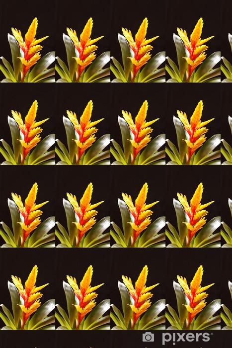 """Papier peint vinyle sur mesure Fenêtre plante """"Vriesea splendens"""" - Fleurs"""