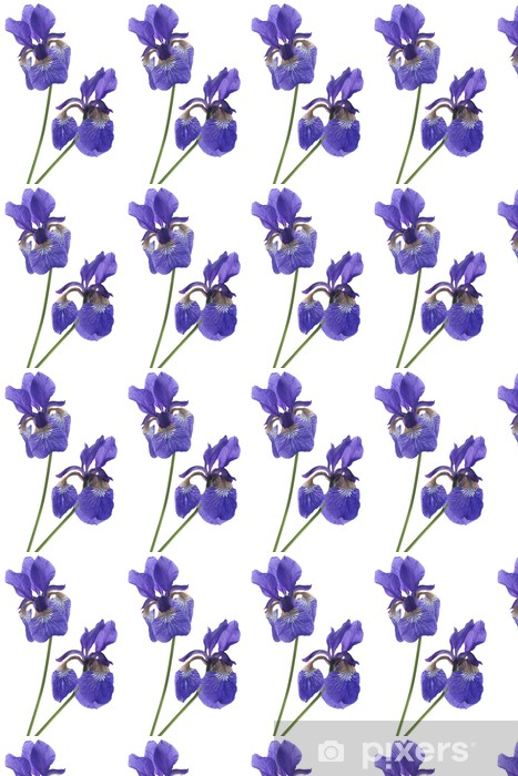 Tapeta na wymiar winylowa Irys - Kwiaty