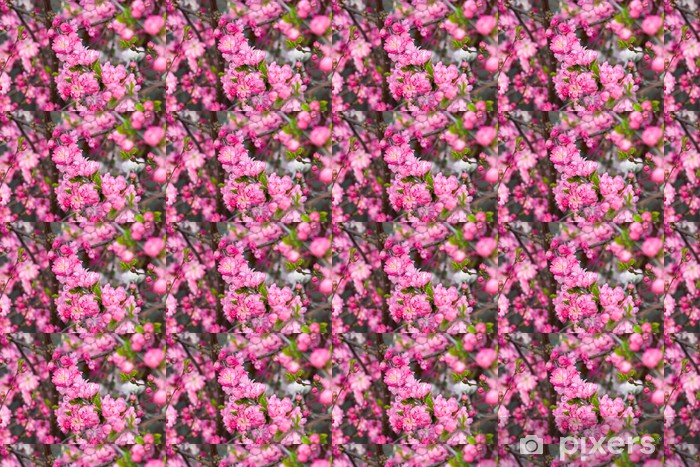 Tapeta na wymiar winylowa Gałęzie wiśni - Kwiaty