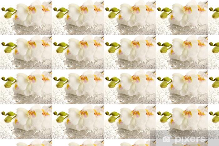 Tapeta na wymiar winylowa Biały piękny storczyk z kroplami - Tematy