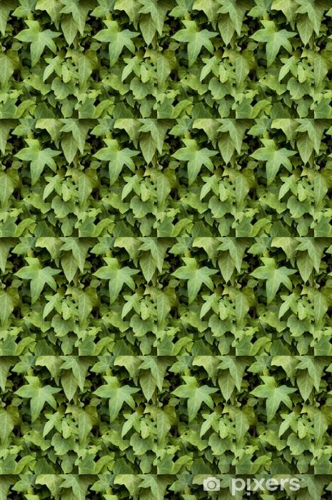 Tapeta na wymiar winylowa Bluszcz na ścianie - Rośliny